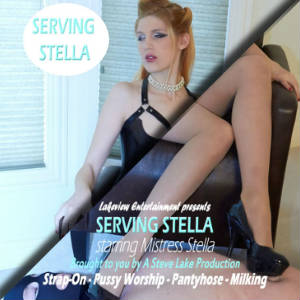 DVD Cover Detail for Serving Stella