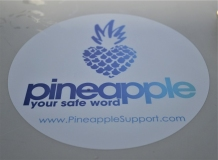 TES 2020 Lisbon ! Pineapple Support's Meet Market ! !