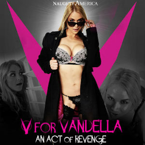 Closeup of Poster for V is for Vandella.