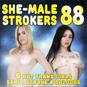 Detail from DVD cover of She-Male Strokers Volume 88.