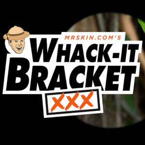 """Mr. Skin's logo with the new """"What-It-Braket"""" contest logotype."""